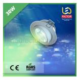 Светодиодная лампа 30W зеленый свет для фруктов