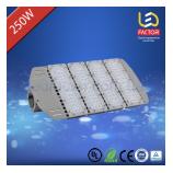 Уличный светильник LF-HVSL250W